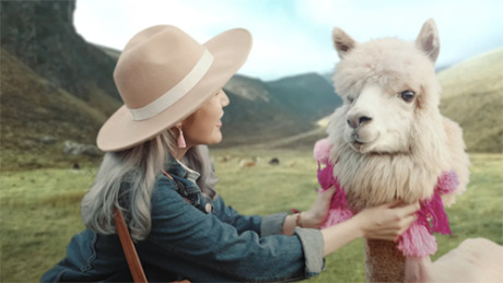 "Great Eastern Travel Kit ""Alpaca"" gallery"